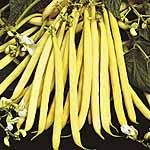 Bean (Dwarf French) Seeds - Valdor