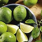 Citrus Tree - Lime