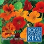 Kew For Kids : Nasturtium Tom Thumb 1 packet (40 seeds)