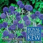 Kew : Echinops Ruthenicus 1 packet (20 seeds)