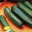 Courgette Jaguar Seeds