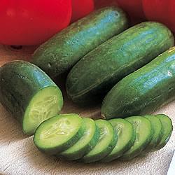 Cucumber Mini Munch Seeds (Gro-sure)