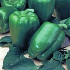 Pepper Diablo & Ringo Seeds (Gro-sure)