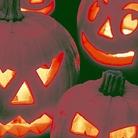 Pumpkin Halloween Seeds