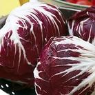 Radicchio Palla Rossa Seeds