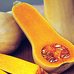 Squash Hunter Seeds