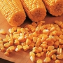 Sweetcorn Lark Seeds (Gro-sure)