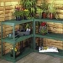 Greenhouse Shelving Unit