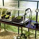 Jumbo Greenhouse Propagator