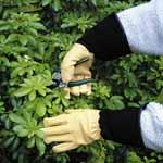 Tough Touch Garden Gloves - GENTS
