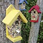 Bird Bistros with nutrition bars (Set of 3)