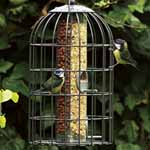 2-in-1 Nut and Seed Feeder