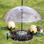 Multi Bird Feeder