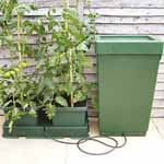Easy 2 Grow Irrigation Kit & Extension Kit