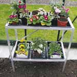 Aluminium Seed Tray Stands