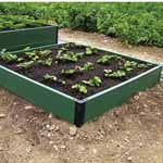 Patio Vegetable Kit