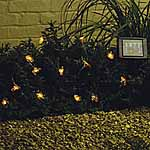 Solar Creature Lights - Betty Bee and Friends