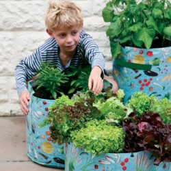 Patio Planters For Children