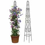 Ornate Obelisks