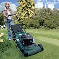 Hayter Spirit 41 Petrol Push Rear Roller Lawnmower (Code: 617)