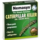 Nemasys Codling Moth Killer Nematodes