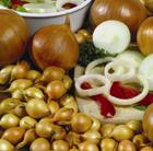 onion 'Troy' (onion sets)