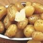 Annabelle Seed Potatoes (Salad)