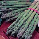 Asparagus Gijnlim Crowns x10