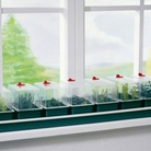 Super 7 Budget Electric Windowsill Propagator