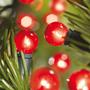 Outdoor / indoor red berry lights