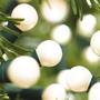 Outdoor / indoor white berry lights