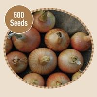 Onion Ailsa Craig 500 Seeds