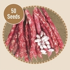 Dwarf French Bean Borlotto Suprema 50 Seeds