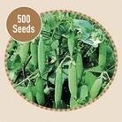 Peas Kelvedon Wonder 500 Seeds