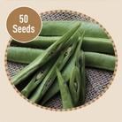Runner Bean Scarlet Emperor 50 Seeds