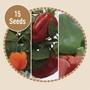 Sweet Pepper F1 15 Seeds