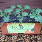 Earthbox Garden Kit (Terracotta)