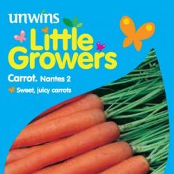 Carrot Nantes Seeds