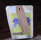 Cornflower   pocket garden