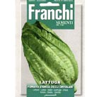 lettuce 'Romaine Bionda' (lettuce)