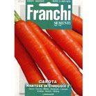 carrot 'Nantese di Chioggia 2' (carrot)