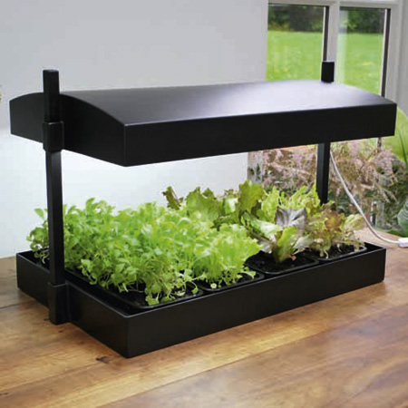 Grow Light and Tray