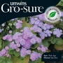 Ageratum Tycoon Blue Seeds (Gro-sure)