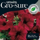 Petunia Grandiflora Flash Velvet Seeds (Gro-sure)