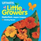 Nasturtiums Jeepers Creepers Seeds