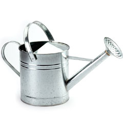 Galvanised Watering Can 1 gallon