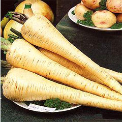 Vegetable Seeds - Parsnip Tender and True
