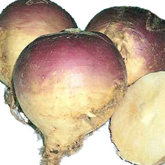 Vegetable Seeds - Swede Magres