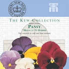 Kew Seed Collection - Pansy Mello