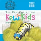 Kew Seeds for Kids - Fur Balls (Gomphocarpus)